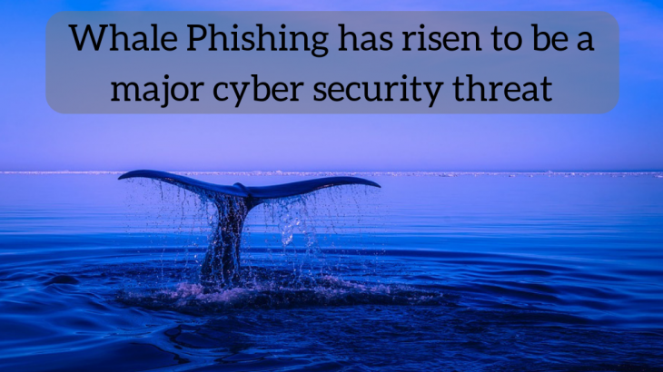 Whale Phishing has risen to be a major cyber security threat